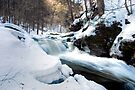 Rushing Winter Runoff At Conestoga Falls by Gene Walls