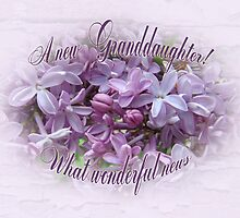 Congratulations New Granddaughter Greeting Card - Lilacs by MotherNature