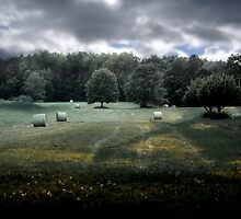 Field by gjameswyrick