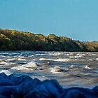Lake Michigan Shoreline from Port Washington by James Meyer