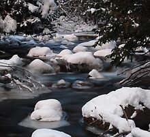 Winter River by Bree Waltman