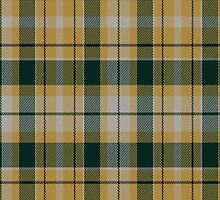 02598 Ada County, Idaho E-fficial Fashion Tartan Fabric Print Iphone Case by Detnecs2013