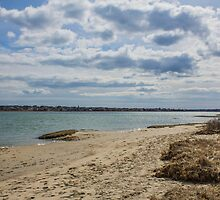 Wells Harbor Dunes by alainaborst