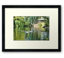 Stanley Park Boating Lake. Framed Print