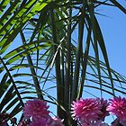 Palm Flowers by Marie Van Schie