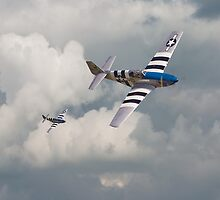 D-Day Mustangs by warbirds