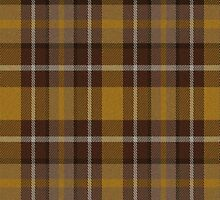 02599 Dakota County, Minnesota E-fficial Fashion Tartan Fabric Print Iphone Case by Detnecs2013