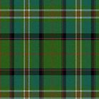 02603 Richland County, South Carolina E-fficial Fashion Tartan Fabric Print Iphone Case by Detnecs2013