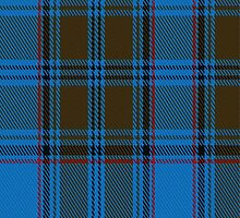 02616 Dunbarton Weft District Tartan Fabric Print Iphone Case by Detnecs2013