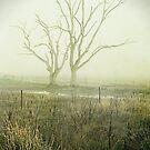 Winter Morning Londrigan 2 by Linda Lees