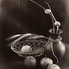 Still life with apples and garlic by Sviatlana Kandybovich