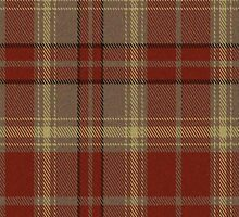02625 Charleston County, South Carolina E-fficial Fashion Tartan Fabric Print Iphone Case by Detnecs2013
