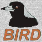 BIRD - Australian Magpie by Ari Hunt