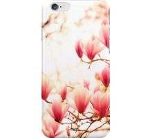 Spring Cherry Blossoms iPhone Case/Skin