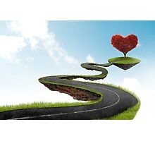 The road to Heart tree Photographic Print