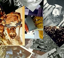 Collage @2 by dudor