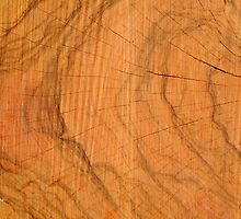 Texture of wood by orsinico