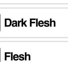 Brick Sorting Labels: Light Salmon,  Sand Red,  Dark Flesh,  Flesh,  Earth Orange Sticker