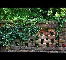 Planting Fields Arboretum State Historic Park Red Brick Wall Covered With Ivy - Upper Brookville, New York by © Sophie W. Smith