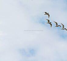 En attente. by Marie Moriscot
