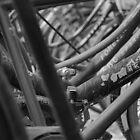 Beijing black and white  by Jamie Alexander