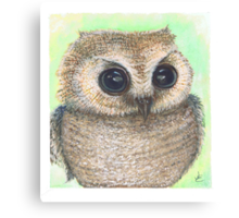 Lil Hoot Canvas Print