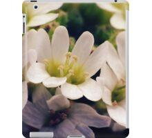 Wildflowers 1 - Hoary Alyssum iPad Case/Skin