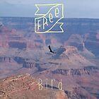 freebird by Becki Breed