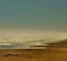 On The Beach by SuddenJim