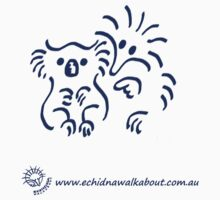 Eccy with koala - blue by Echidna  Walkabout