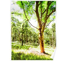 Magical Deer Forest Poster