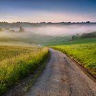 Misty morning by Peter Zajfrid