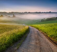 Misty morning by Peter Zajfrid