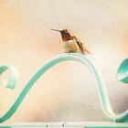 Shabby Chic Hummingbird by smilingrain