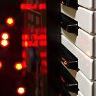 Roland Synth Keys by StephenRphoto