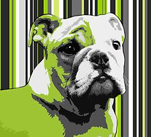 English Bulldog Puppy Abstract by Natalie Kinnear