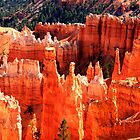 Bryce Canyon by aidan  moran
