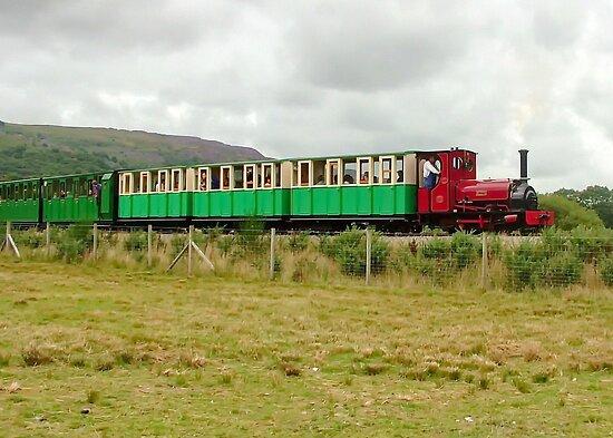 Snowdonia Mountain Railway by AnnDixon