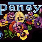 Pansy Fruit Crate Label by LABELSTONE