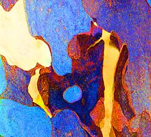 Summer Eucalypt Abstract 23 by Margaret Saheed