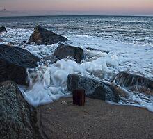 A Jersey Baptism by Debra Fedchin