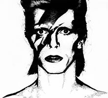 David Bowie - Biro Drawing by EmzART