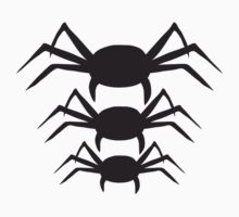 Spider Design by Style-O-Mat
