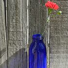 Rustic Red by Marijane  Moyer