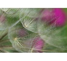Ethereal Texture Photographic Print