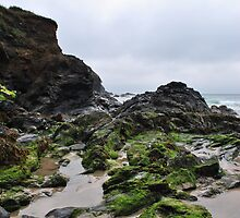 Poldu Cove in Cornwall by Ekl75