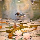 Waterlilies and ducks (card) by JudyUNelson