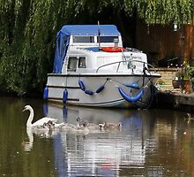 Boat Moored on the Canal by AnnDixon