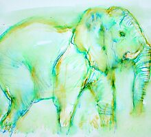 ELEPHANT in GREEN by lautir