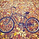 Bike and Leaves in Greenpoint. Brooklyn, New York by Mon Zamora